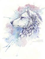 memories by wolf-minori