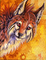 ACEO Kirsch by wolf-minori