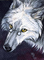 ACEO  xCollecx by wolf-minori