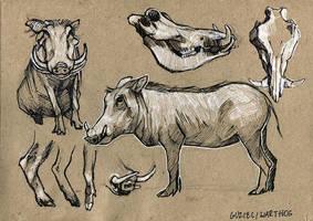 Warthog - 100animals100days by wolf-minori