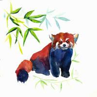 Red panda - 100animals100days by wolf-minori