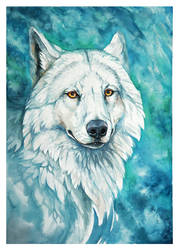 Turquoise by wolf-minori