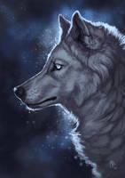 Void II by wolf-minori