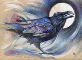 Raven by wolf-minori