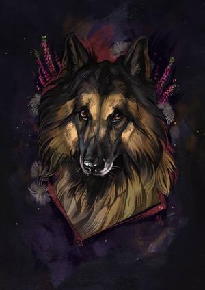 Remember by wolf-minori