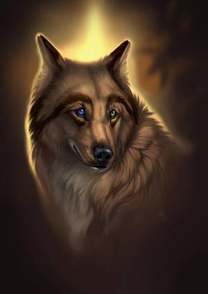 Autumn Gold by wolf-minori