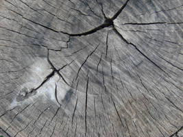 texture 12 by lorylinn-stock