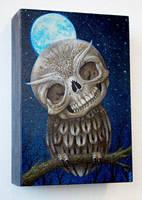 Sapiens Nocturnus by lordego1