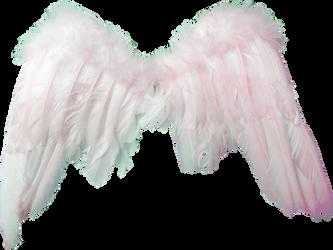 alas de angel rosa by angelarominarivas