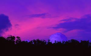 Pink Storm by jbrum