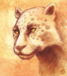 Jaguar by melusineistross