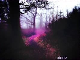 + foggy trails by xineiz