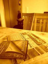 Cat Sepia by D-e-s-i-g-n