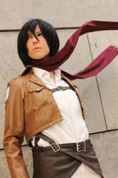 SnK: Mikasa Ackerman by iigo-tomo-e
