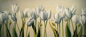White Tulips by SayakoRush