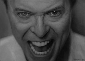 Bowie by jackkaminski