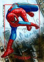 Spider-man Archives by artguyNJ