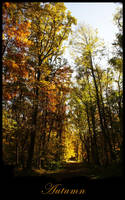Autumn by LadybirdM