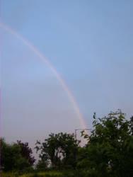 Rainbow by BUNNYL0V3