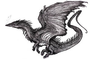 Winged Dragon XIII, Various, Dream by KingOvRats