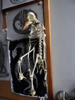 Padlinka the Bone Puppet by KingOvRats