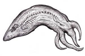 Dream Rudimentary Skeleton Creature III by KingOvRats