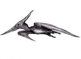 Dream Micronodon, Retrodactyl, Kongamato III by KingOvRats