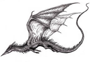 Winged Dragon XV by KingOvRats