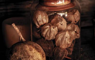 An autumn jar by lotusmick15