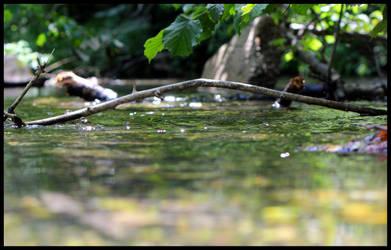 Waterside by privatemeta