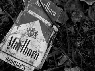 Cigarettes _gray by WorstRoadtripEVER