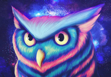 Space Owl by TRAVELLINGTHEC0SM0S