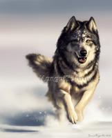 Dashing Through the Snow by MangaKidArt