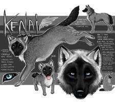 Kenai the Outcast by MangaKidArt