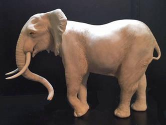 Elephant-side Edited-1 by ArtOfElysee