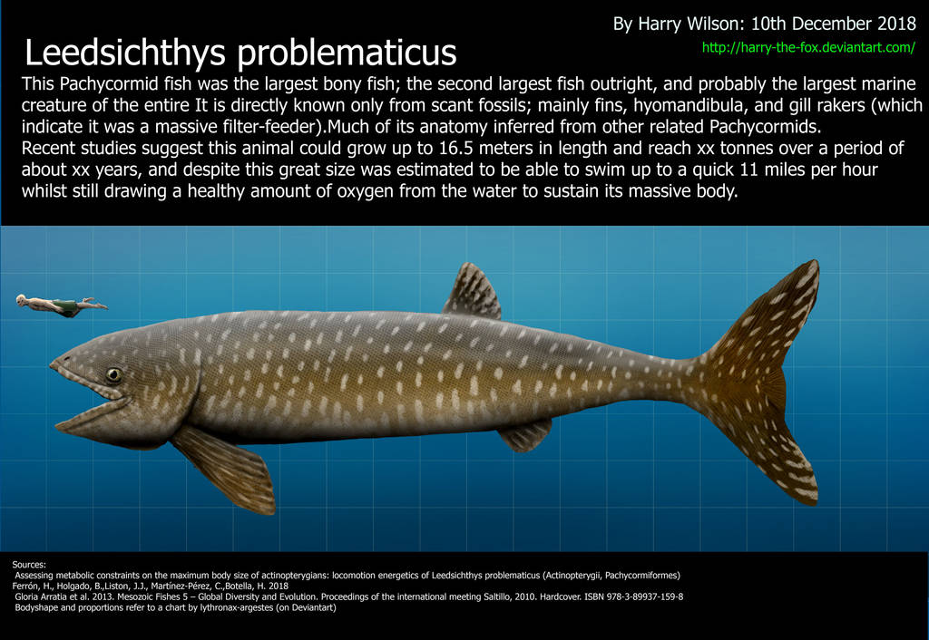 Leedsichthys problematicus size by Harry-the-Fox