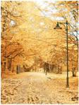 Snowy autumn... by Aur3lijus