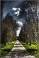 Paradise Avenue - HDR by IG-Design
