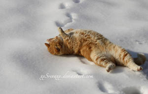 I love snow II by XxSvevaxX