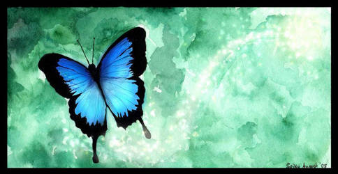 Butterfly by Spikylein