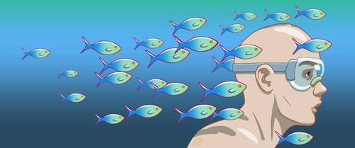 School of fish by fabianfucci