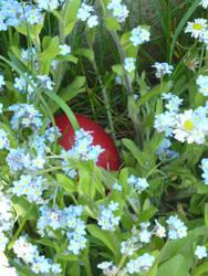 Hide and Seek by Tunabella