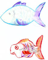 April fishes by jainas