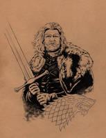 Eddard(Ned)Stark / Game of Thrones by jasonbaroody