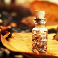 in November by leelloor