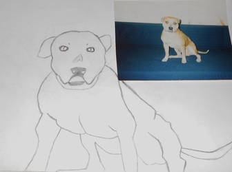 My first dog... by ANTI-DARK