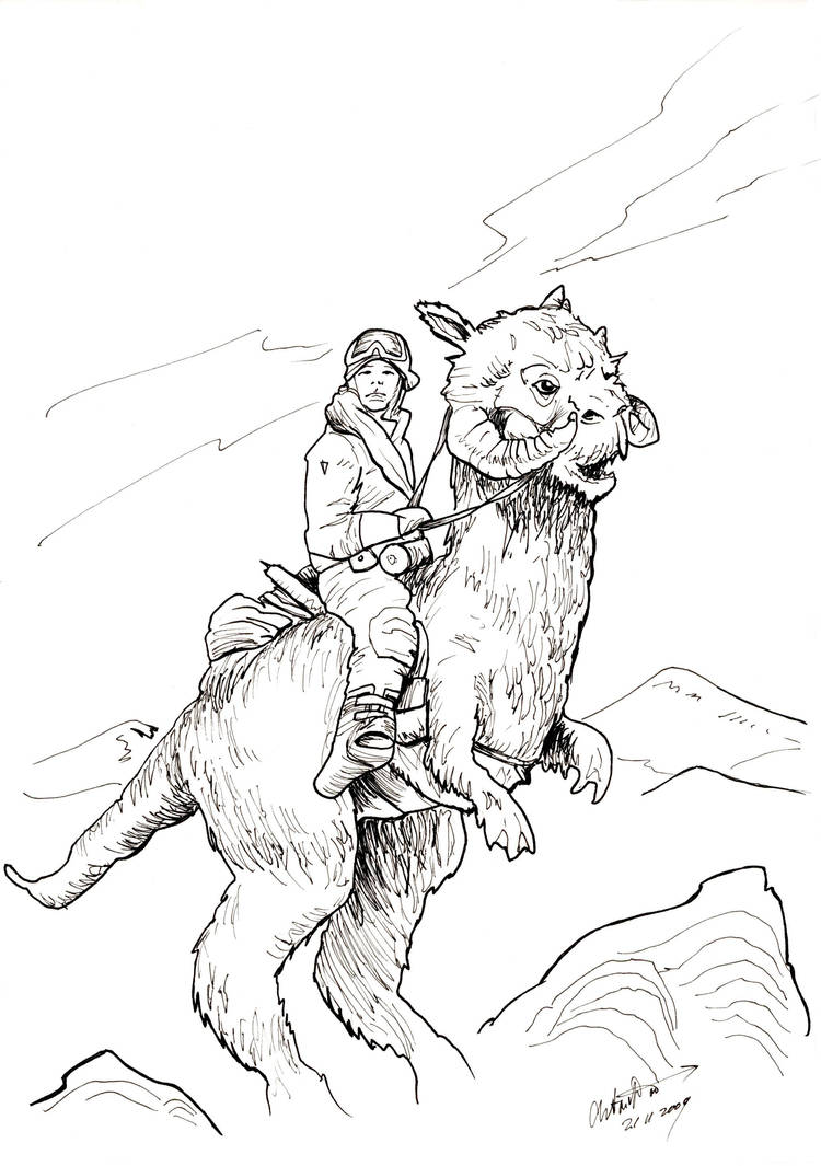Star Wars: Luuk on Tauntaun by antonvandort
