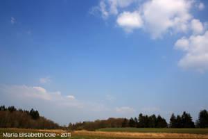 Open field by MissCole