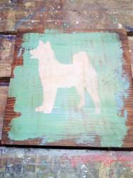 Siberian Husky by roundtower