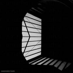 Shadowed Tears by amathal